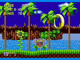 Foto do Jogo Sonic the Hedgehog